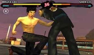 Bruce Lee Dragon Warrior